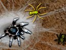 Play Arachnid Wars